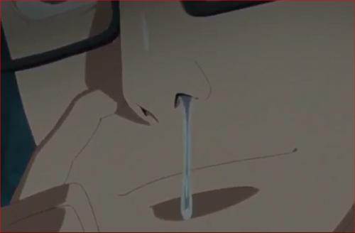 アニメBORUTO48話、ウドン先生の忍法・ハナミズキ