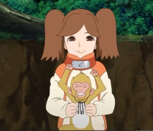 アニメBORUTO49話、コマ猿捕獲に成功したなみだ
