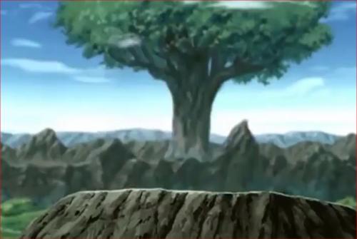 アニメNARUTO、神樹