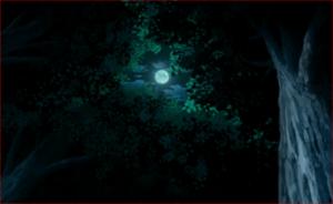 アニメBORUTO60話、木ノ葉の里の森