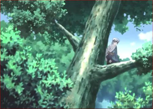 アニメBORUTO第73話、木の上にいるサラダのミツキ
